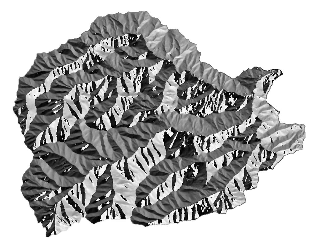 carta-esposizioni-pogliaschina-analisi-morfometriche