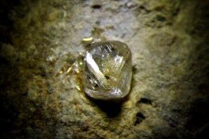 diamante-kimberlite