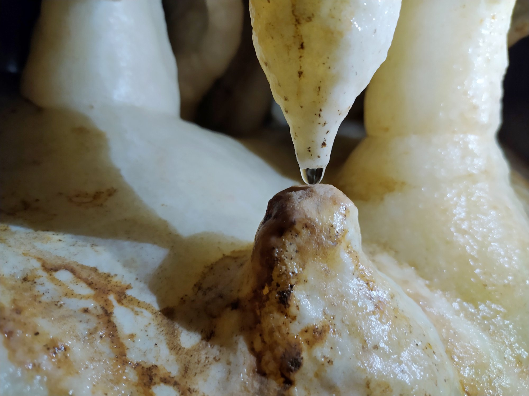 carsismo-stalattite-stalagmite